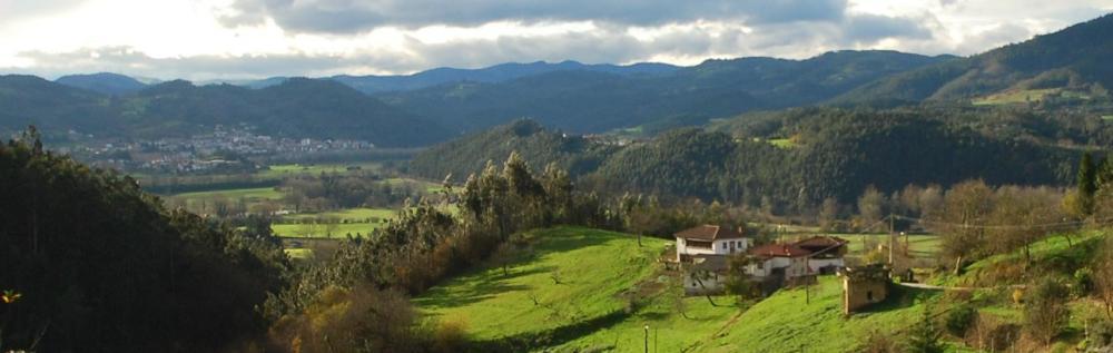 view at the mountain from riberas asturias spain